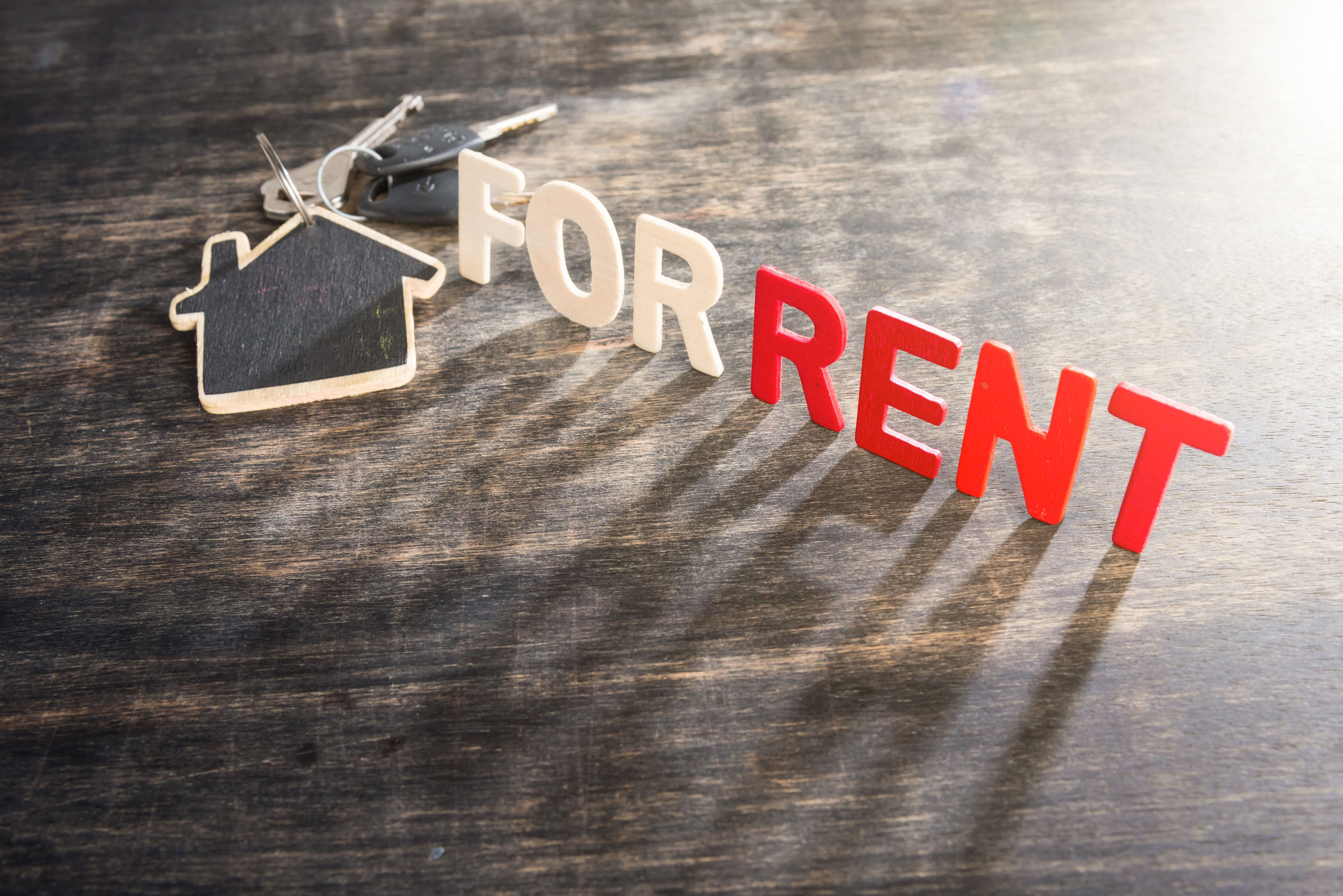 Rental market activity shows signs of recovery